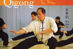 FIVE ANIMAL SPORTS QIGONG Gravado em Boston 2007