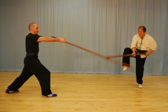 GRAVAÇÕES DO SHAOLIN BASIC SATFF SEQUENCES Boston 2005